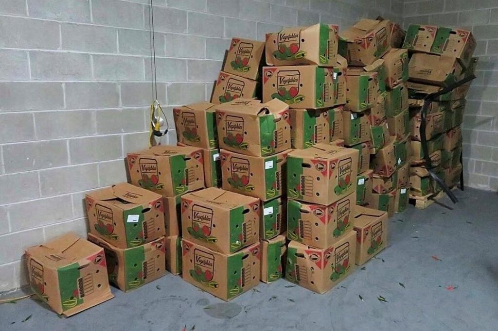 Philadelphia produce importer sentenced needed for smuggling cocaine in flower boxes of peppers