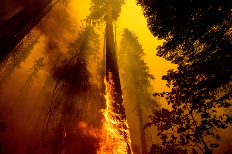 As US western wildfires ravage property, protection services boom