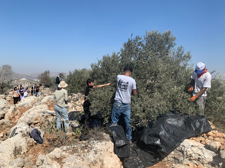 Beita residents reach lands for first time since settler takeover