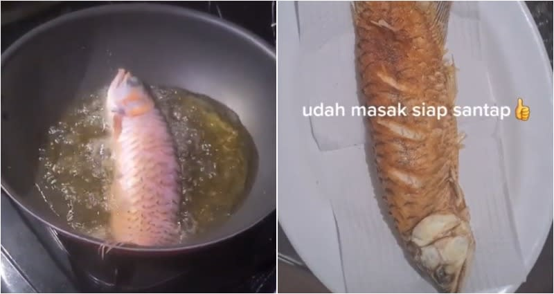 TikToker makes a meal out of her husband's lucky Asian arowana pet fish to teach him a lesson